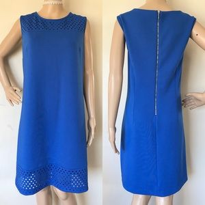 Stunning Sleeveless Blue Shift Dress